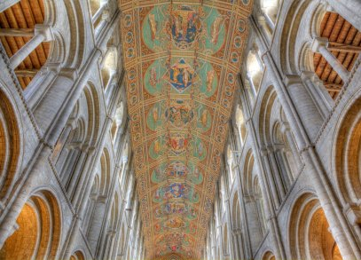 ely roof2